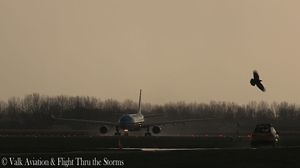 Last Flight of Captain Johan van der Sluis @ KLM A330.00_00_53_06.Still001