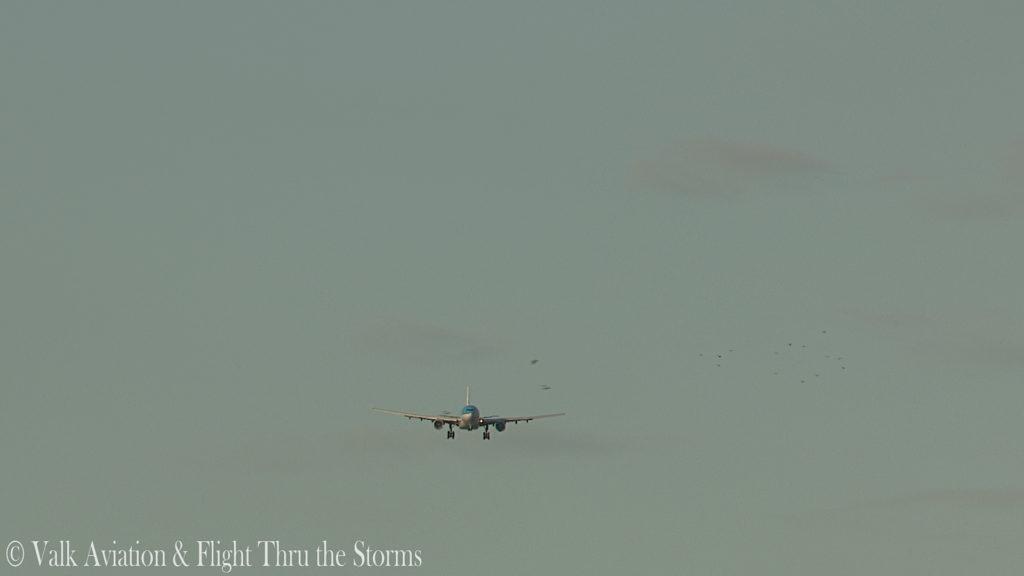 Last Flight of Captain Rene van Tol.00_04_04_05.Still016