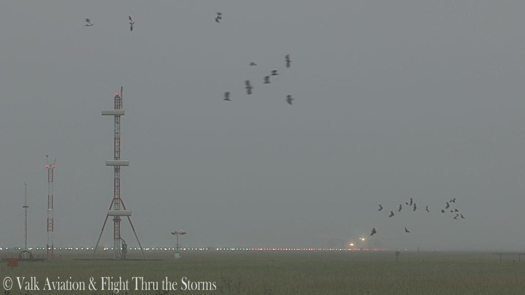 Last flight of Captain Paul Melkert @ KLM B777.00_02_02_00.Still003